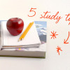 Five-tips-to-help-you-or-your-child-study-through-half-term