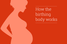 Hypnobirthing-mini-course---how-the-birthing-body-works