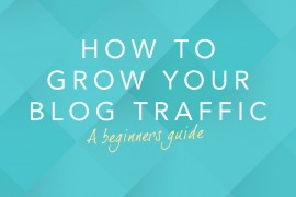 The-beginners-guide-to-growing-your-blog-traffic