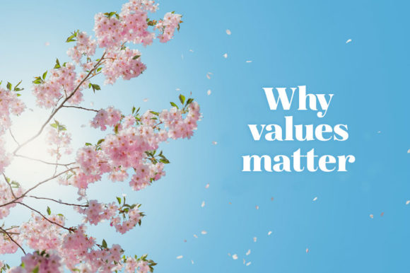 Why-values-matter