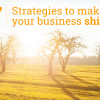 business-strategies