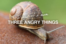 three-angry-things