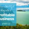 turn-a-beautiful-blog-into-a-profitable-business2