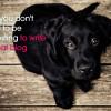 write-a-great-blog