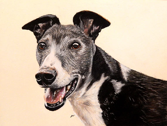 Interview-with-artist-Gillian-Ussher-dog
