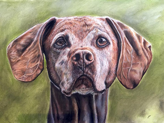 Interview-with-artist-Gillian-Ussher-dog2